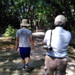 夏の自然を感じながら、緑道ウォーキング!! 桜井